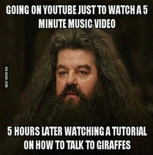 Typical YouTube... - meme