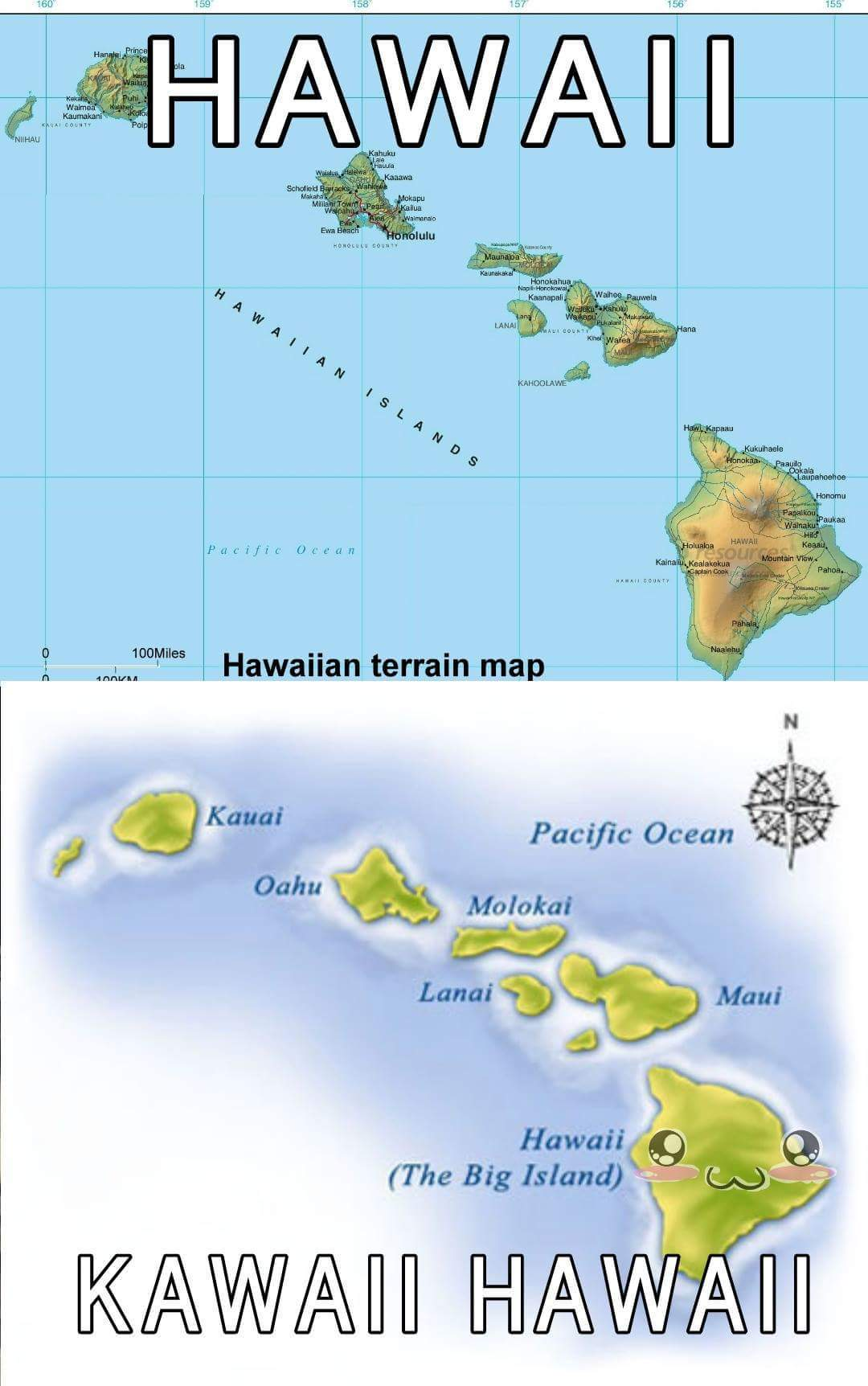 Hawaii-Sama - meme