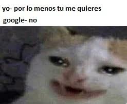 Ni google te quiere xdxdxdxd - meme