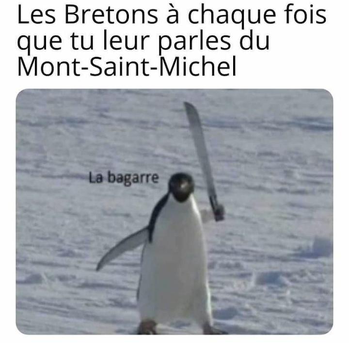 """""""beur ssalé é queen amane"""" - meme"""