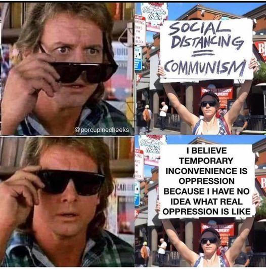 idiot - meme