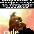 Cule ._.XD
