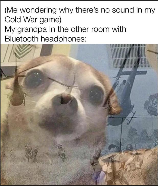 PTSD - meme