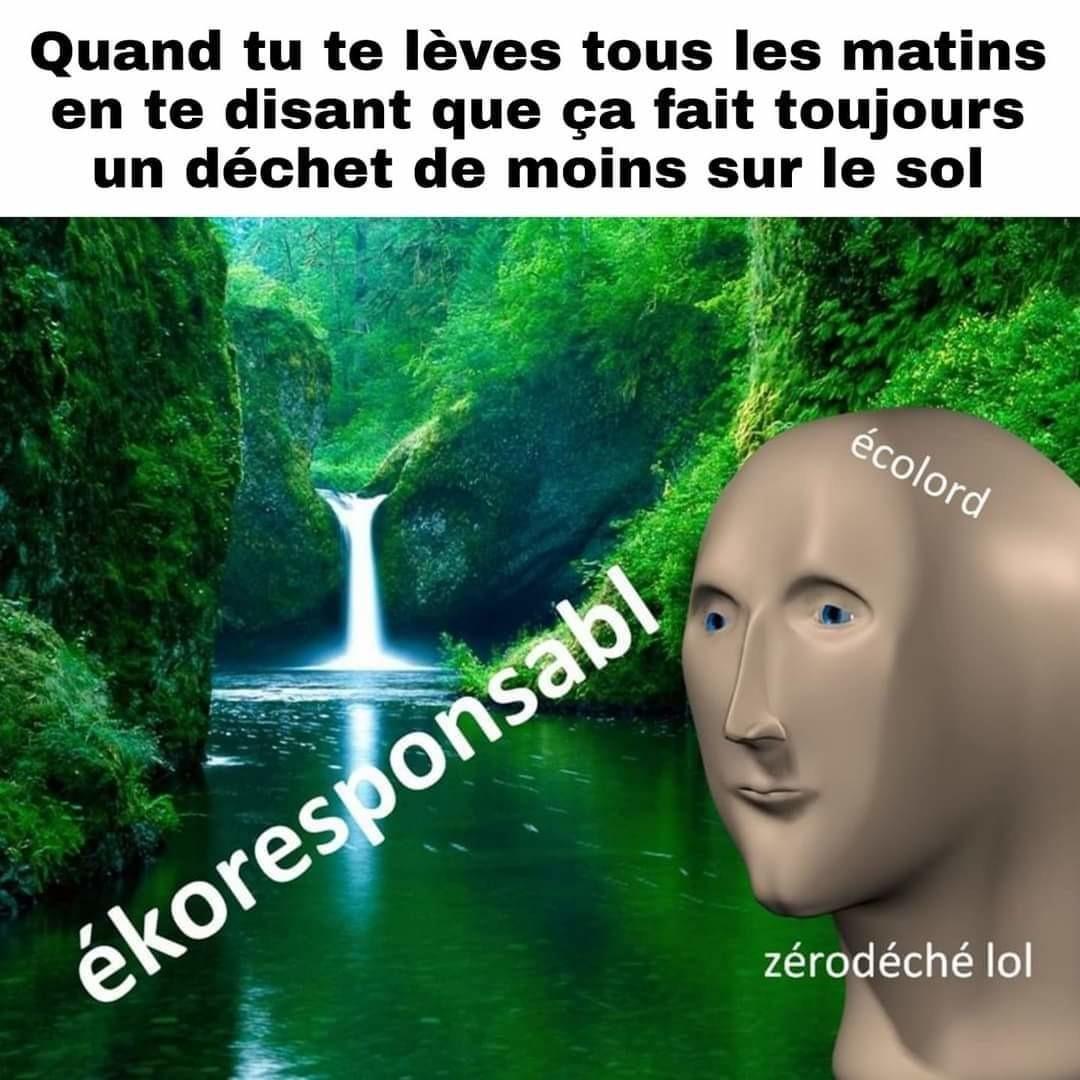 Ah yes ekologi - meme