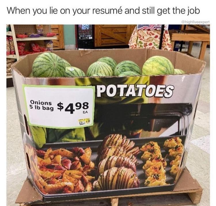 resume - meme