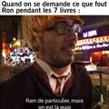 Ron Weasley.... It's levioSAAAAAA