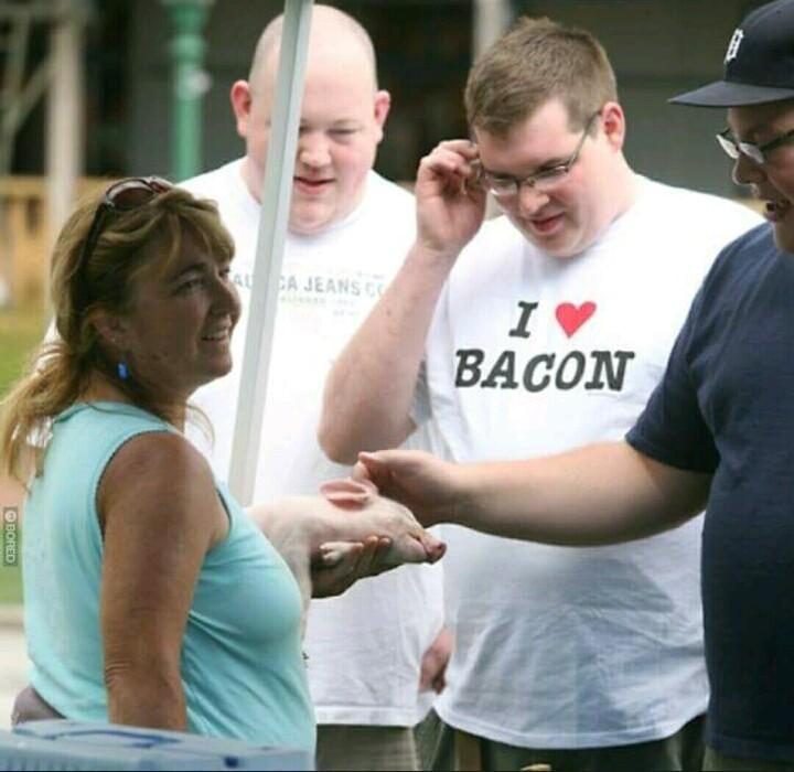 O titulo foi roubar bacon - meme