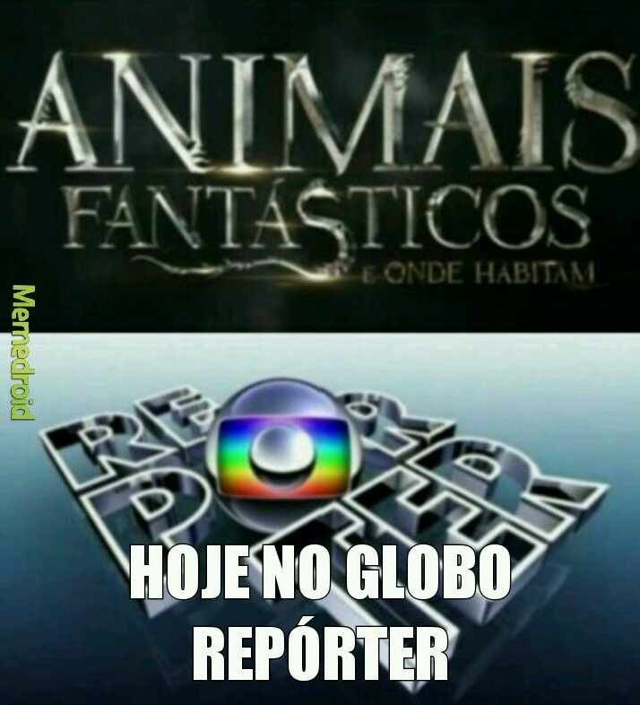 Hoje no globo repórter - meme
