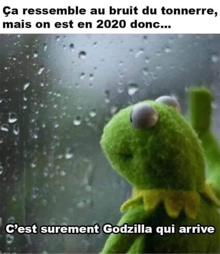 Fin du monde incoming - meme