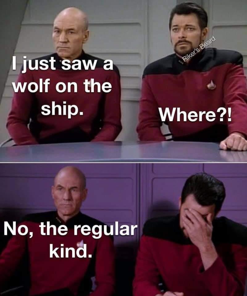 Star trek memes stolen from a quality guy