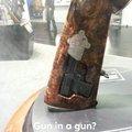 Gunseption?