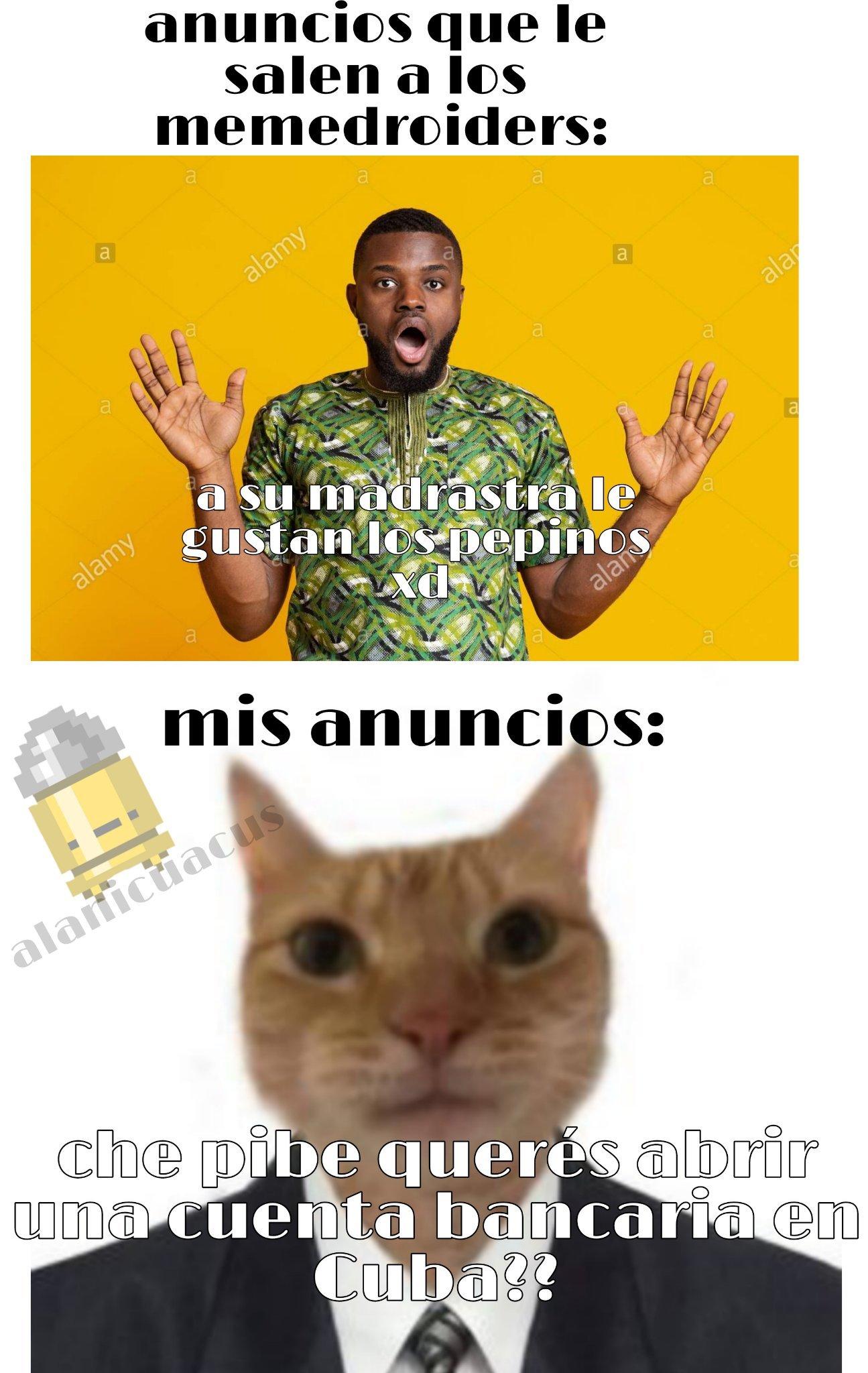 Ya les dije que no quiero abrir una cuenta de libros en Panamá - meme