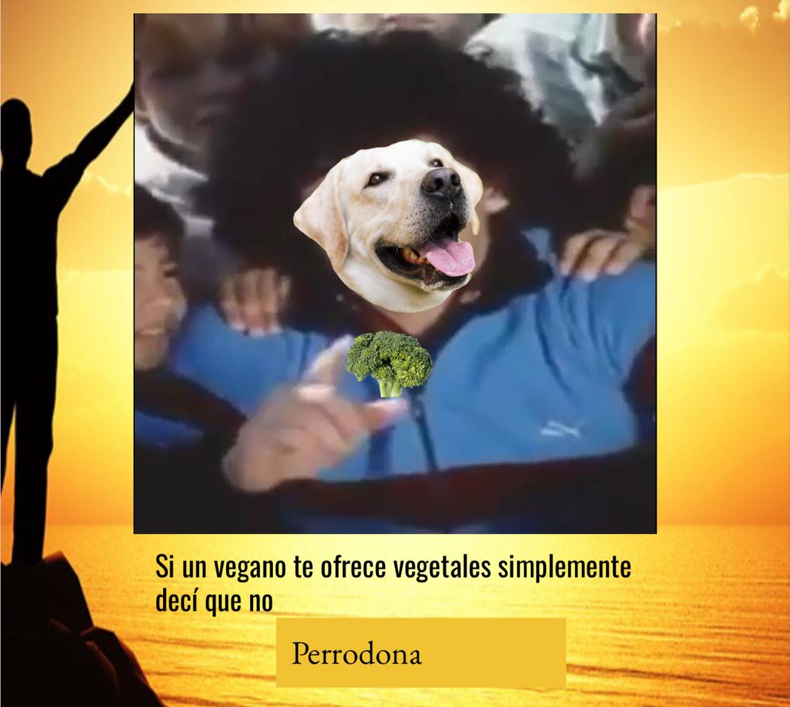 Plis los perros comen carne - meme