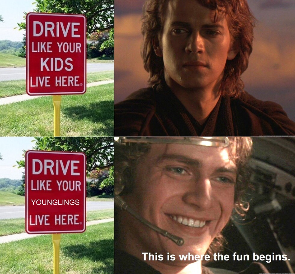 Younglings Crossing - meme