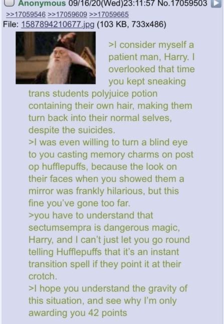 Based Harry - meme