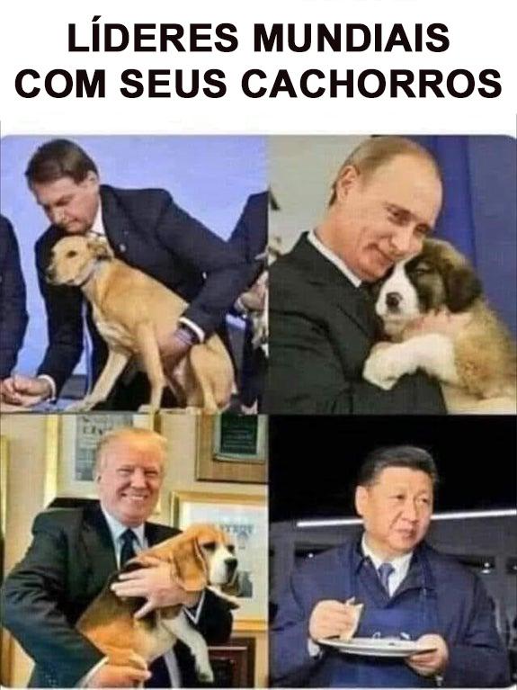 Dog Pill Chinesa - meme