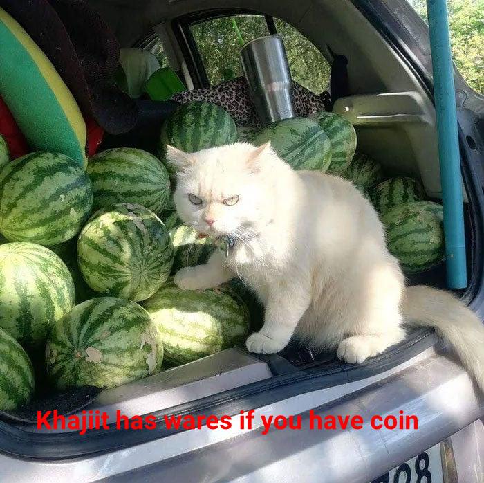 Nice melons - meme