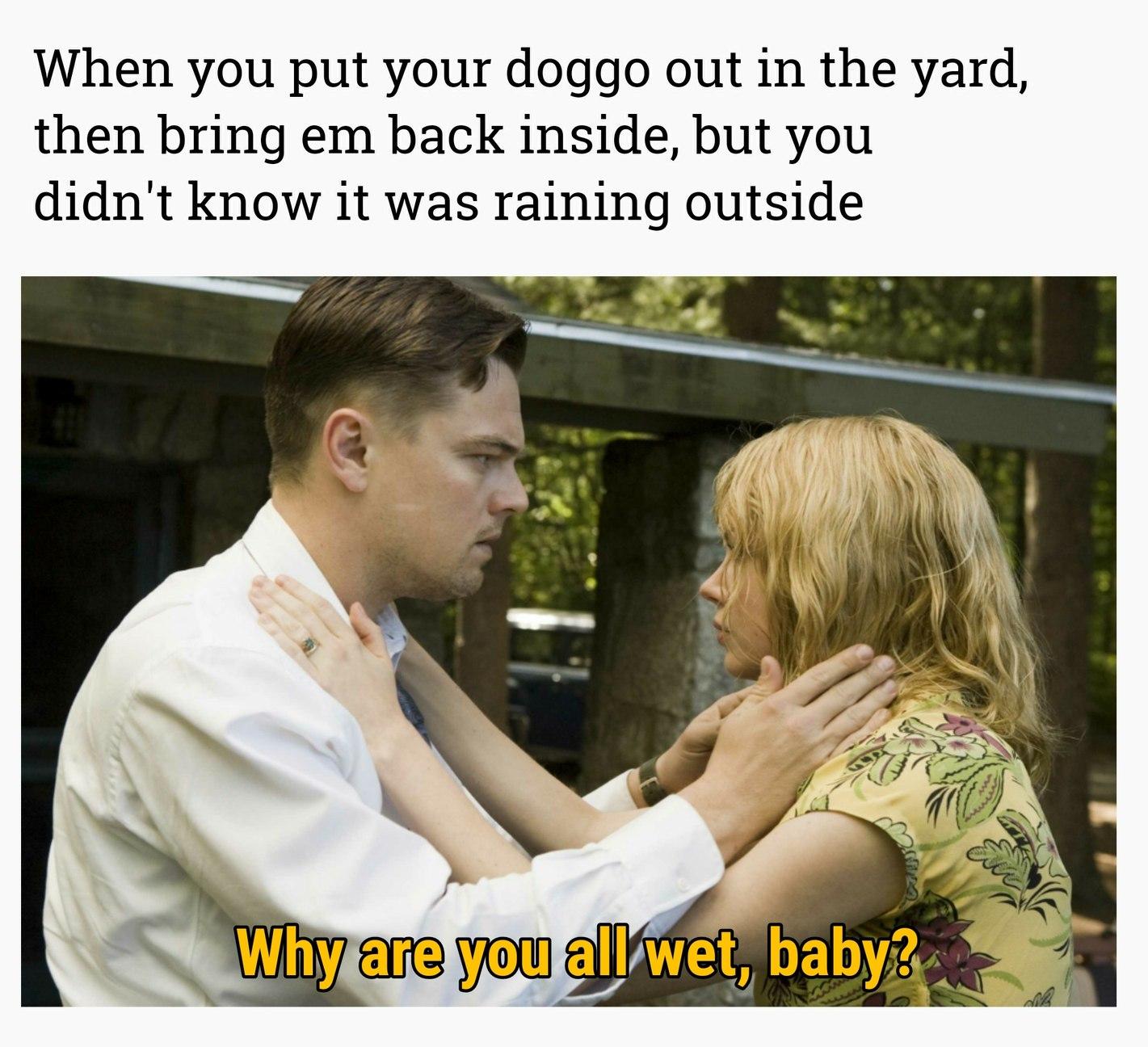 Shutter Island - meme