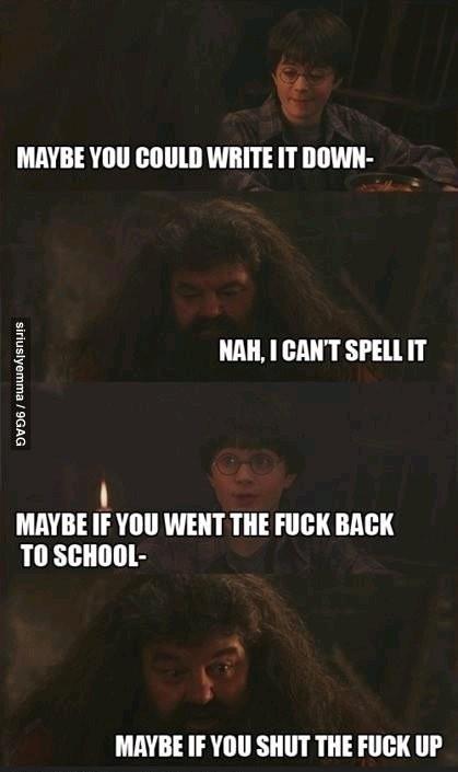 Hagrid you illiterate dick - meme