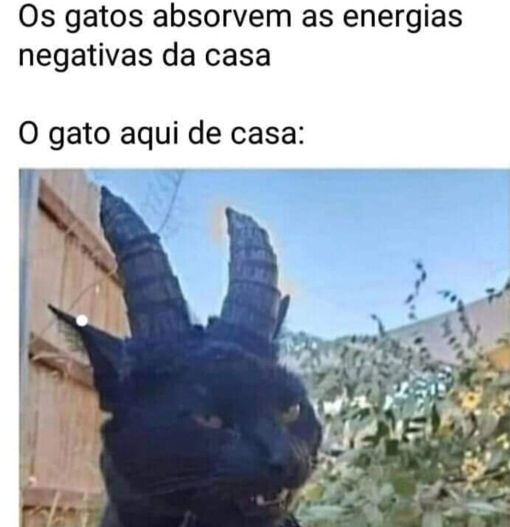 Energias negativas - meme