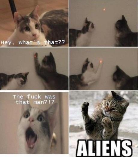 """""""aliens"""" - meme"""