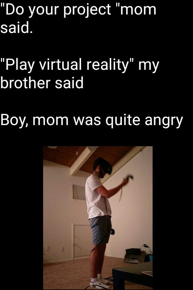 Played VR for first time, it was great - meme