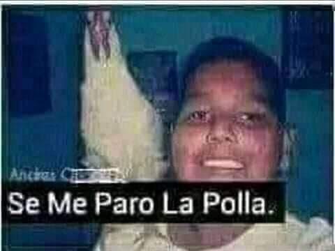 * se calienta y quiere tener 9 hijos con el aunque sean pobres y vivan en latino america* - meme
