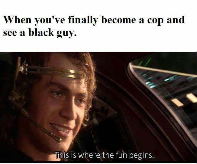 Modern day police - meme