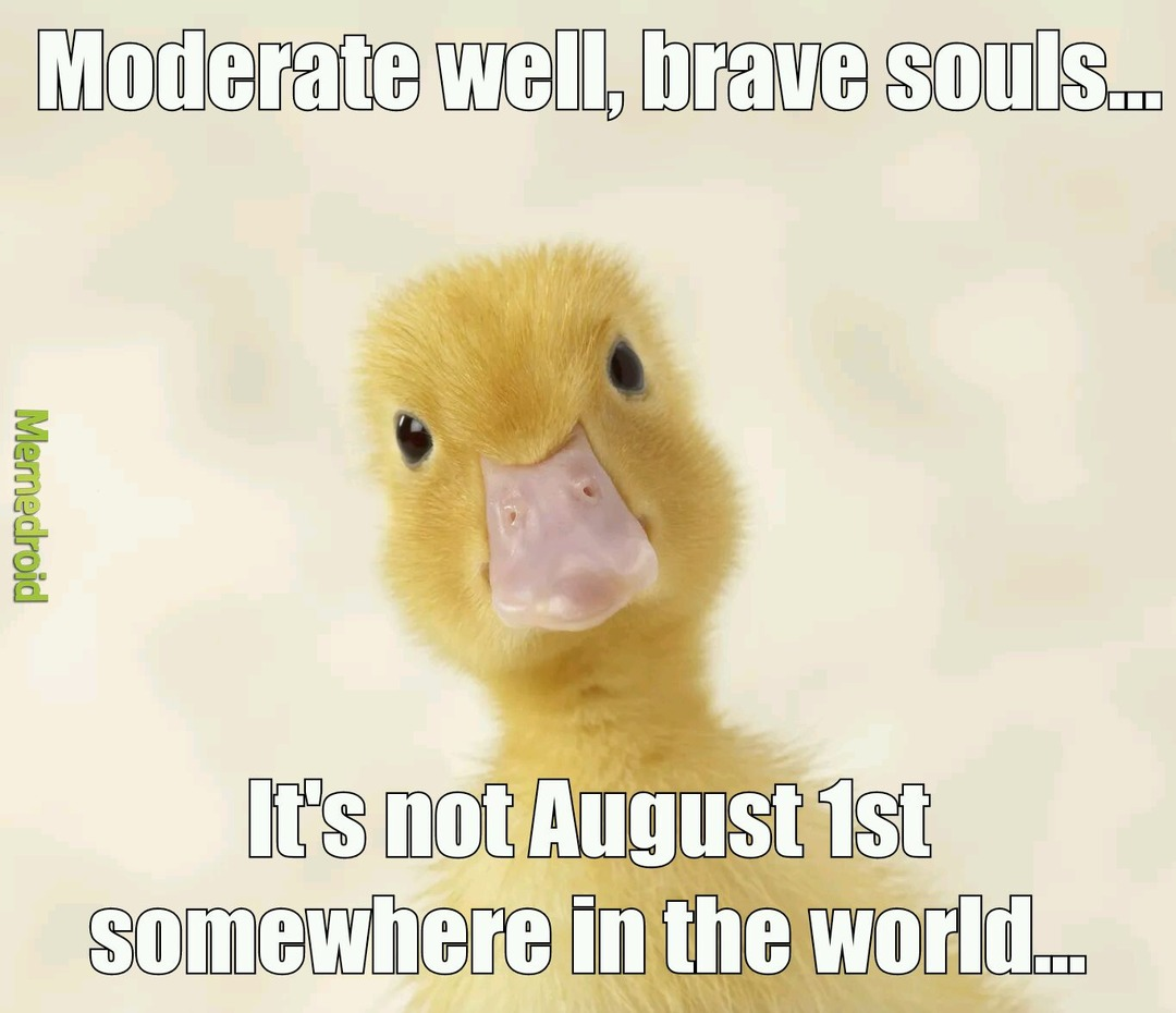 Have a duck, coz ducks are awesome! - meme
