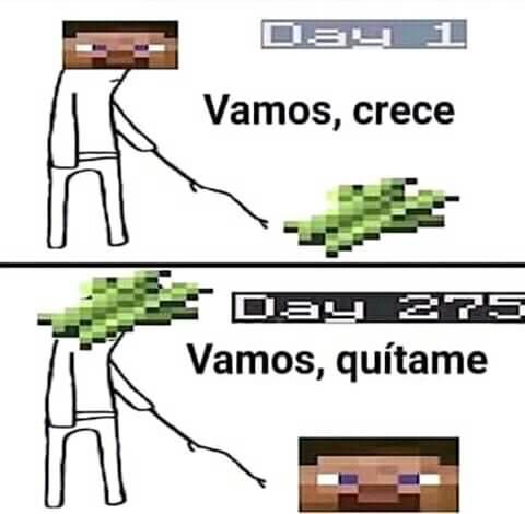 Calidad 480p - meme