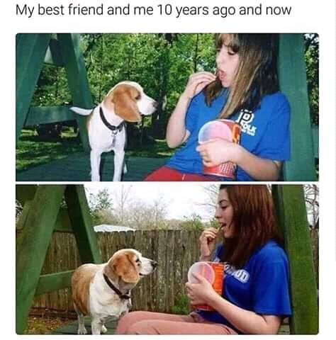 Best Friend - meme