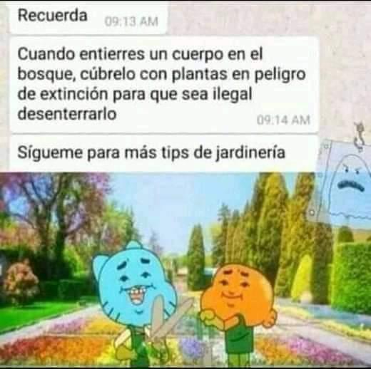 Sígueme para mas tips de jardinería - meme