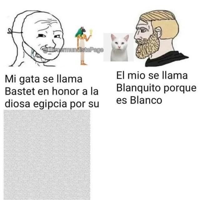 fjejdufuej manchita - meme