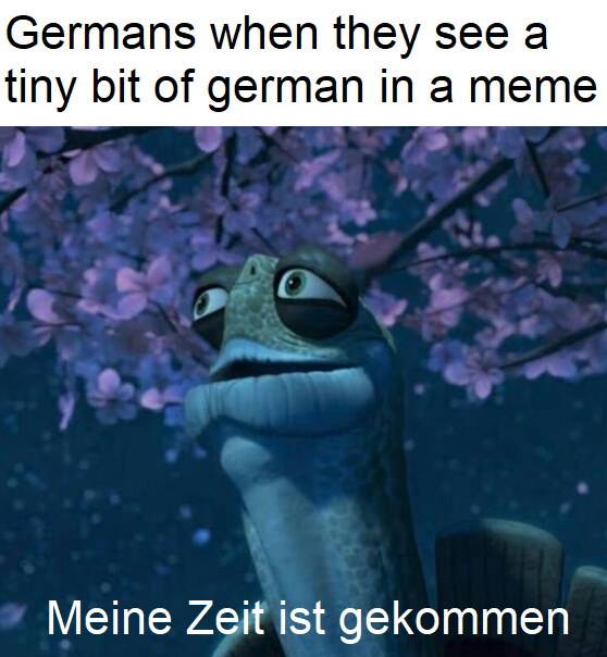 Germans when they see a tiny bit of german in a meme