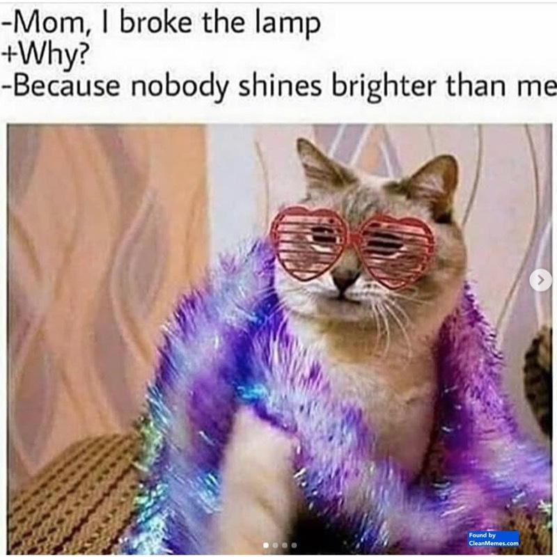 I'm just posting memes I like