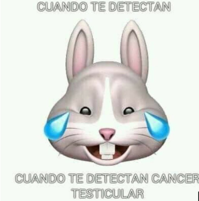 Al titulo le diagnosticaron cancer testicular - meme