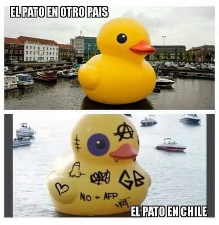 chile :D - meme