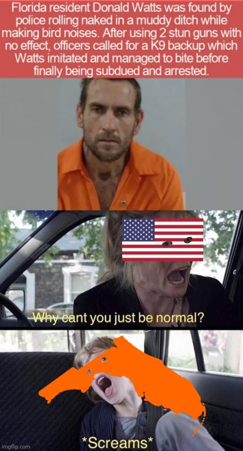 There is normal American? - meme
