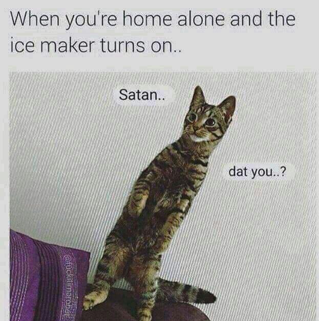 Me home alone - meme