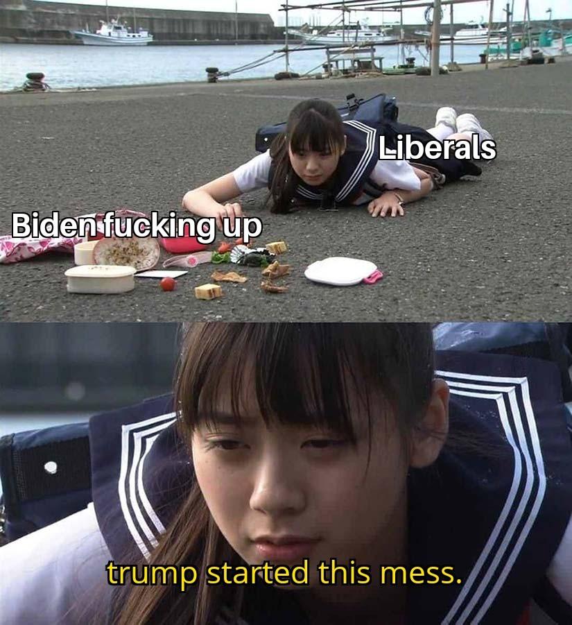 Libtards - meme