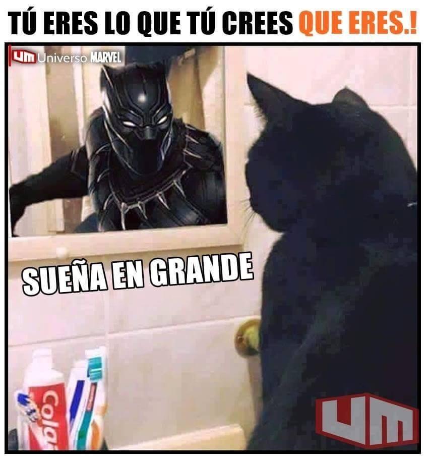 Pantera Negra \:v/ - meme
