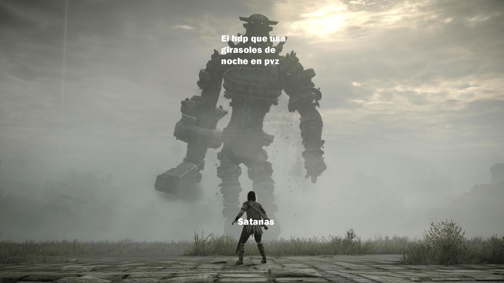 Mi primer meme de pvz