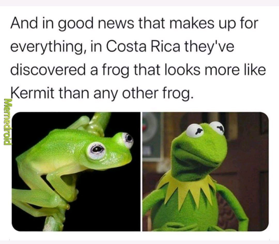 Finally some good news - meme
