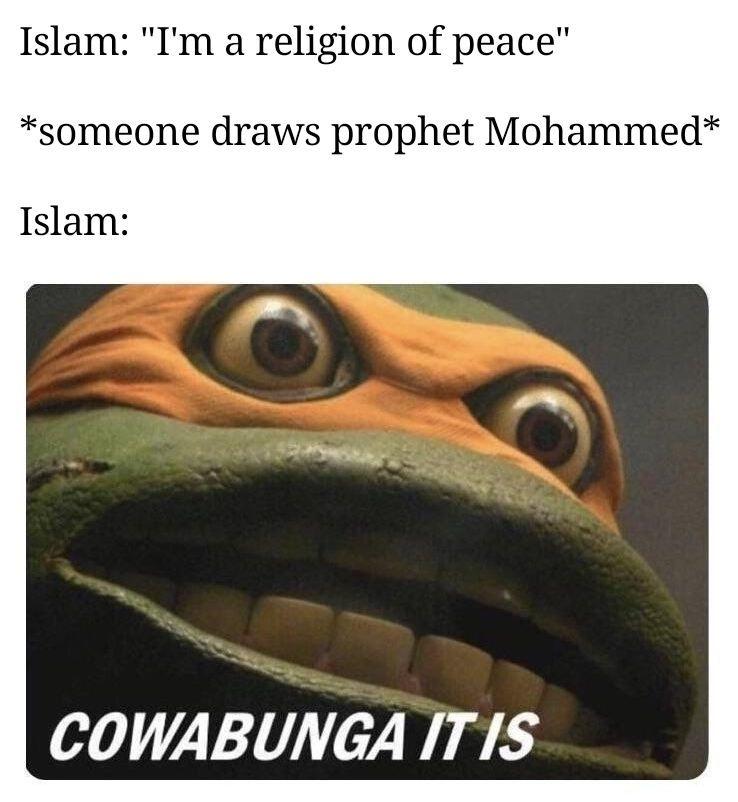 Turtle jihad - meme