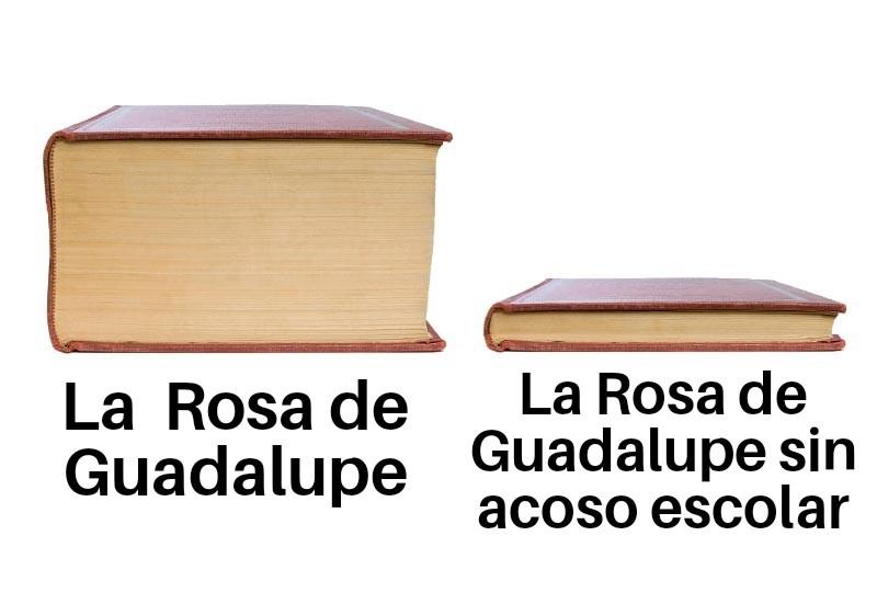 La Rosa De Guadalupe - meme