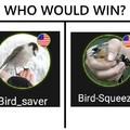 My money's on Bird_Squeezer