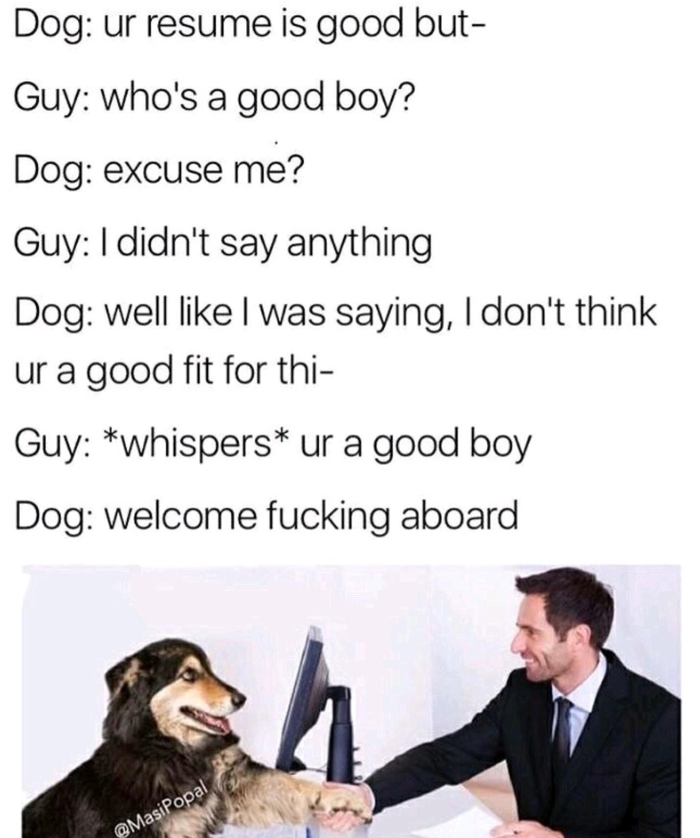 Buisness doggo - meme