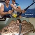 Cavil fisher