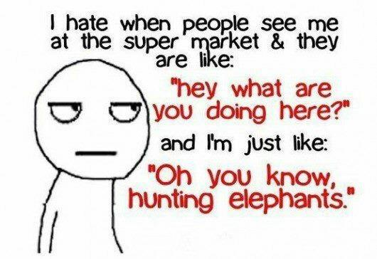 Just hunting elephants - meme