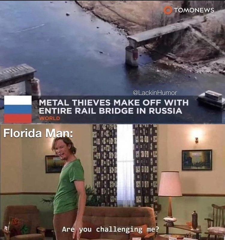 takes entire bridge - meme